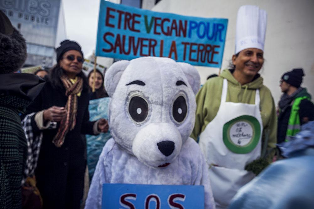 Proteste del 29 Novembre