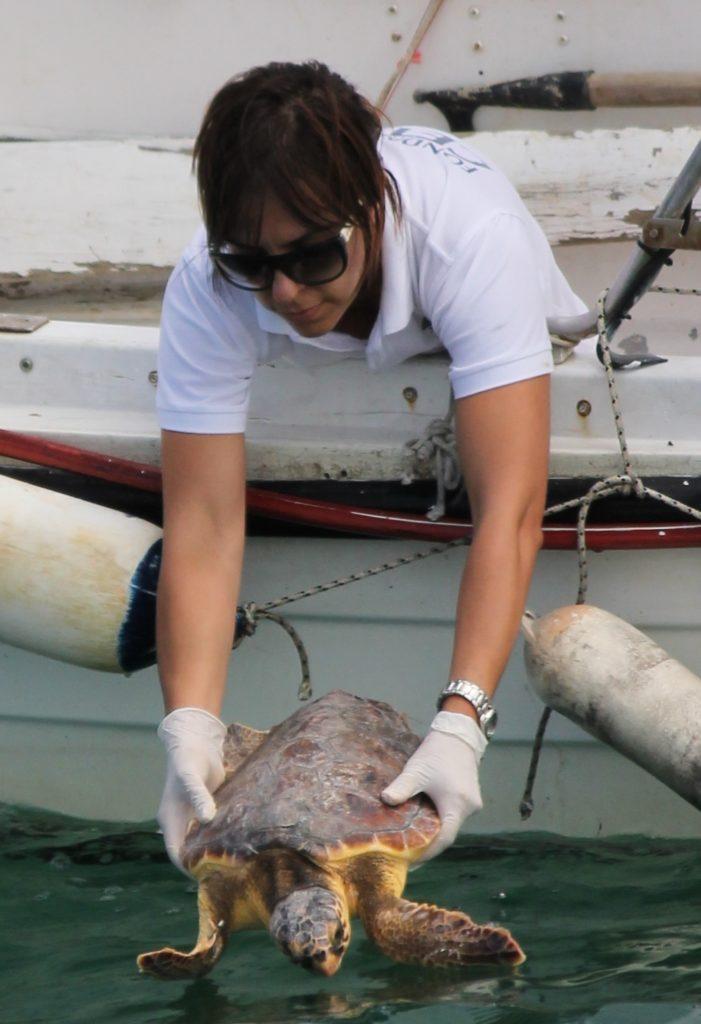 BioEcoGeo_fondazione tartarughe