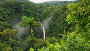 foresta-amazzonica_bioecogeo