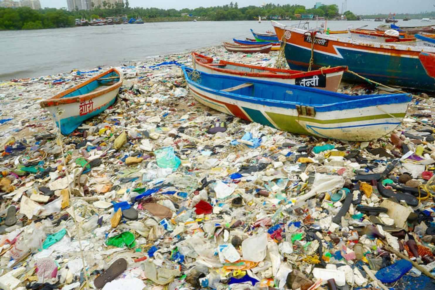 BioEcoGeo_inquinamento_plastica2