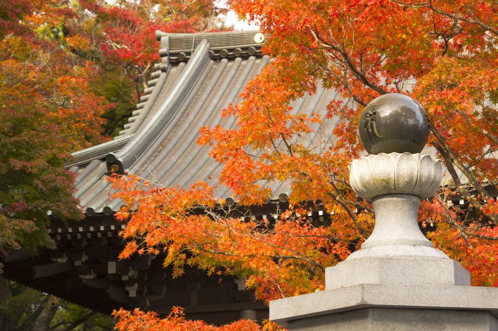 BioEcoGeo_Monte_Takao_tempio