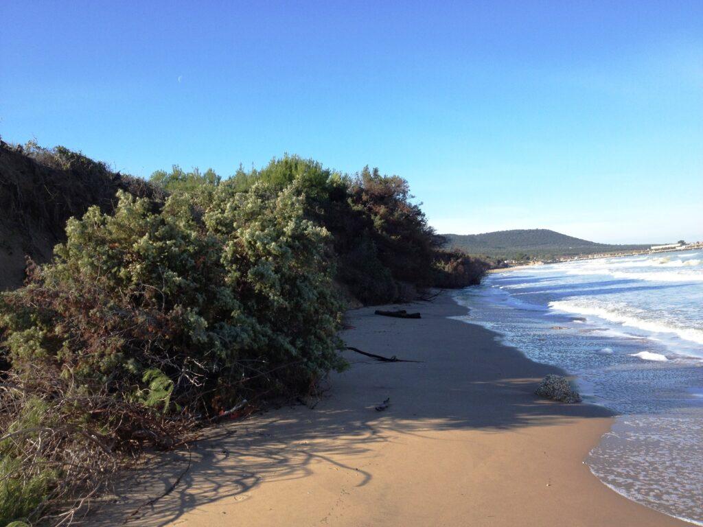 BioEcoGeo_erosione_spiagge