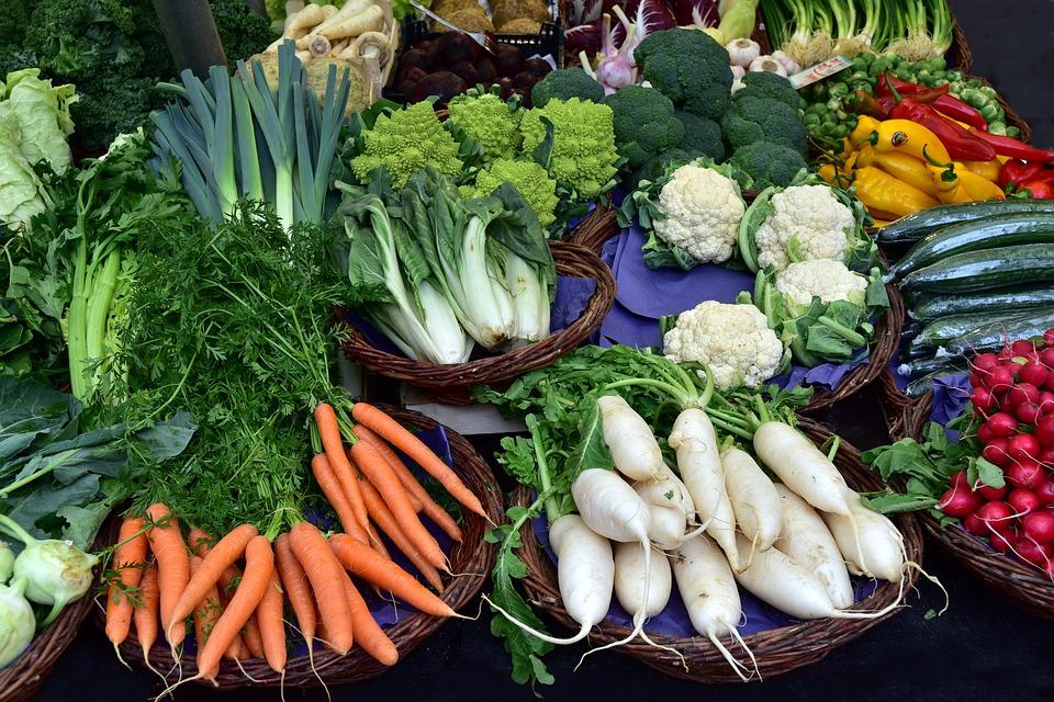 BioEcoGeo_verdura_inverno