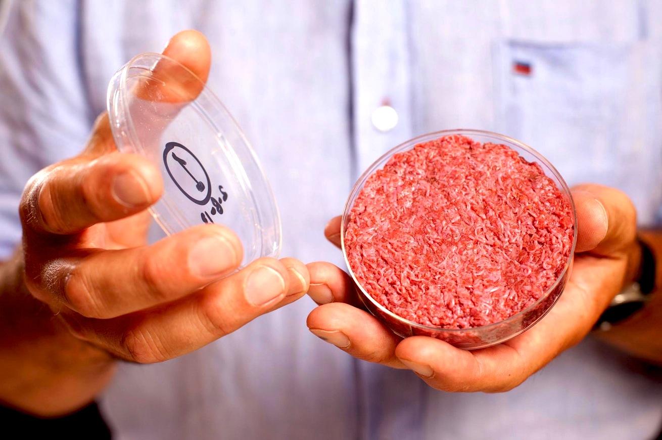 BioEcoGeo_carne-sintetica