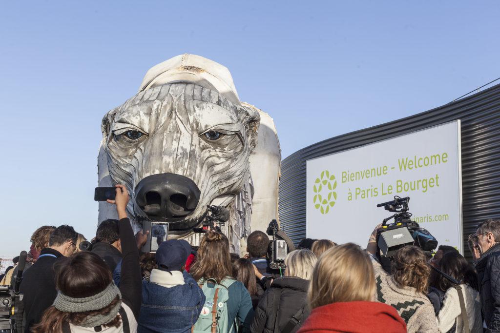 L'orso di Greenpeace alla COP21
