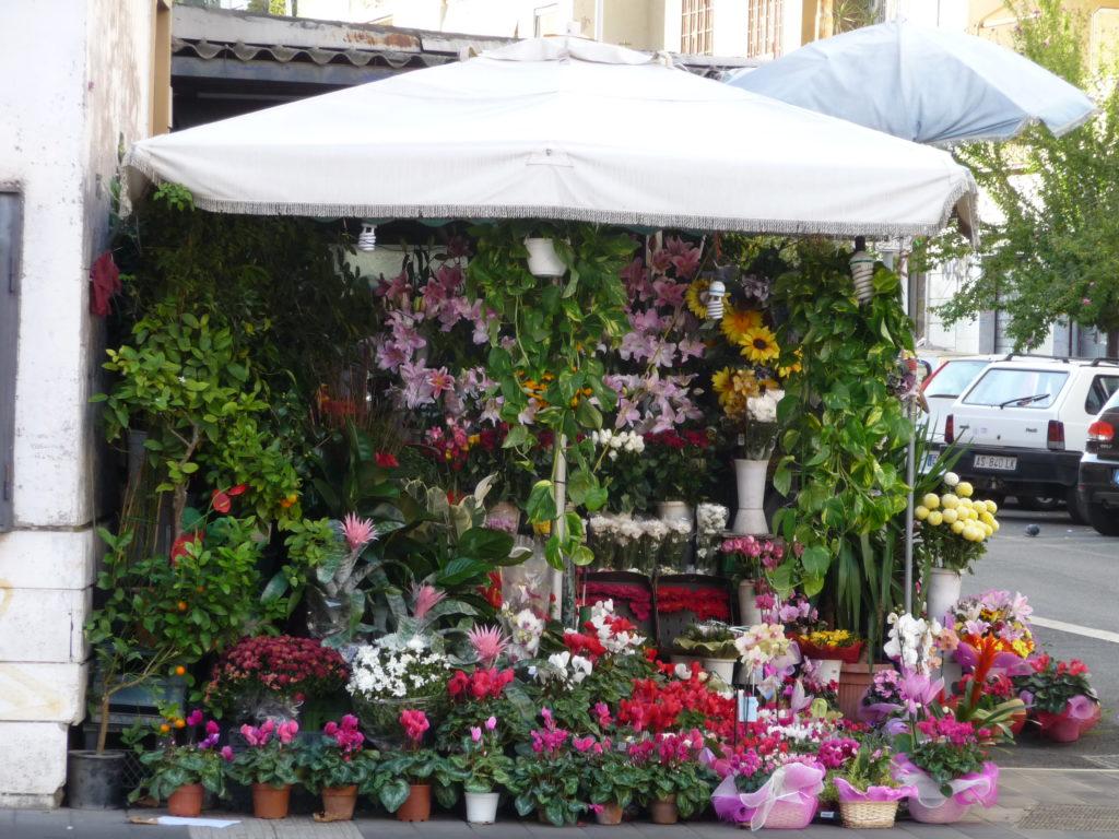 Roma fiori Simonetta Sandri