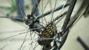 altri mondi bike tour_bioecogeo