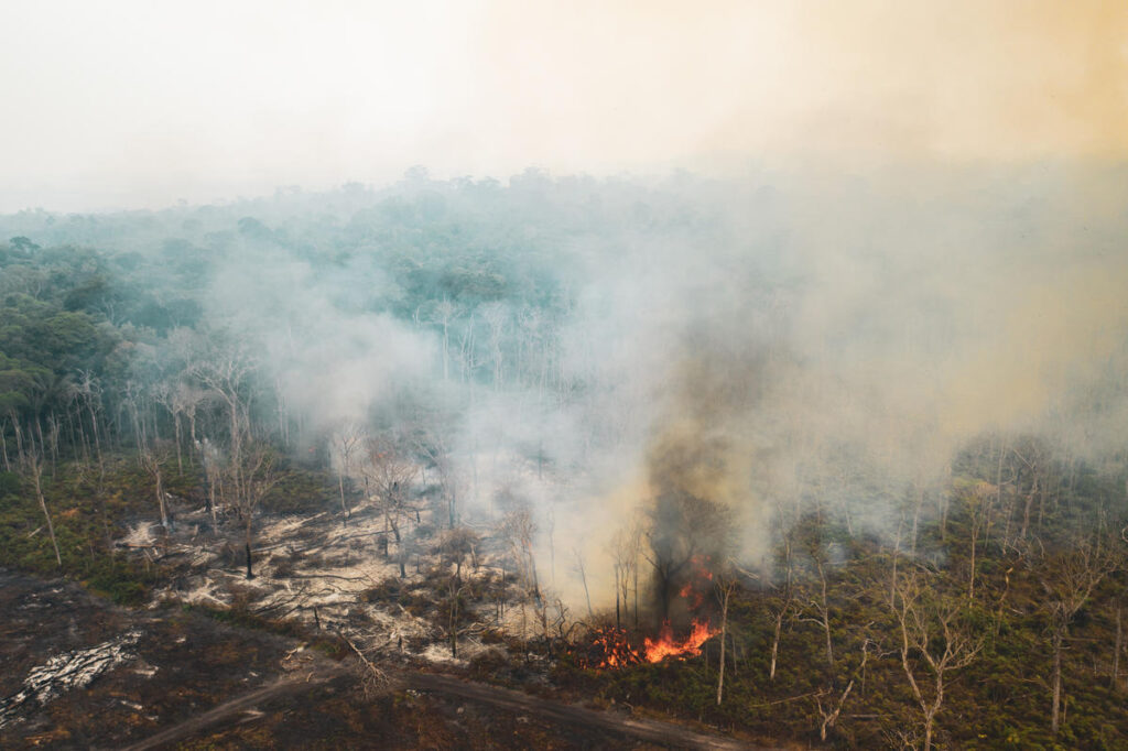 The number of fire outbreaks registered in the Amazon in 2019 is one of the largest in recent years. From January to August 20, the number of fires in the region was 145% higher than in the same period of 2018. Greenpeace did an overflight at various locations in the Amazon to document and record the extension of the destruction caused by fires and deforestation. A quantidade de focos de incêndio registrados na Amazônia em 2019 é uma das maiores dos últimos anos. De janeiro a 20 de agosto, o número de queimadas na região foi 145% superior ao registrado no mesmo período de 2018. O Greenpeace realizou um sobrevoo em diversos locais da Amazônia para documentar e registrar a extensão da destruição gerada pelas queimadas e pelo desmatamento.