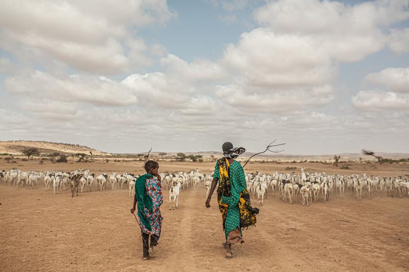Piccoli allevatori colpiti dalla siccità in Etiopia_credit Pablo Tosco_Oxfam