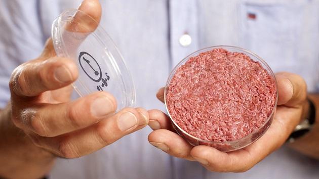 BioEcoGeo-carne-in-provetta