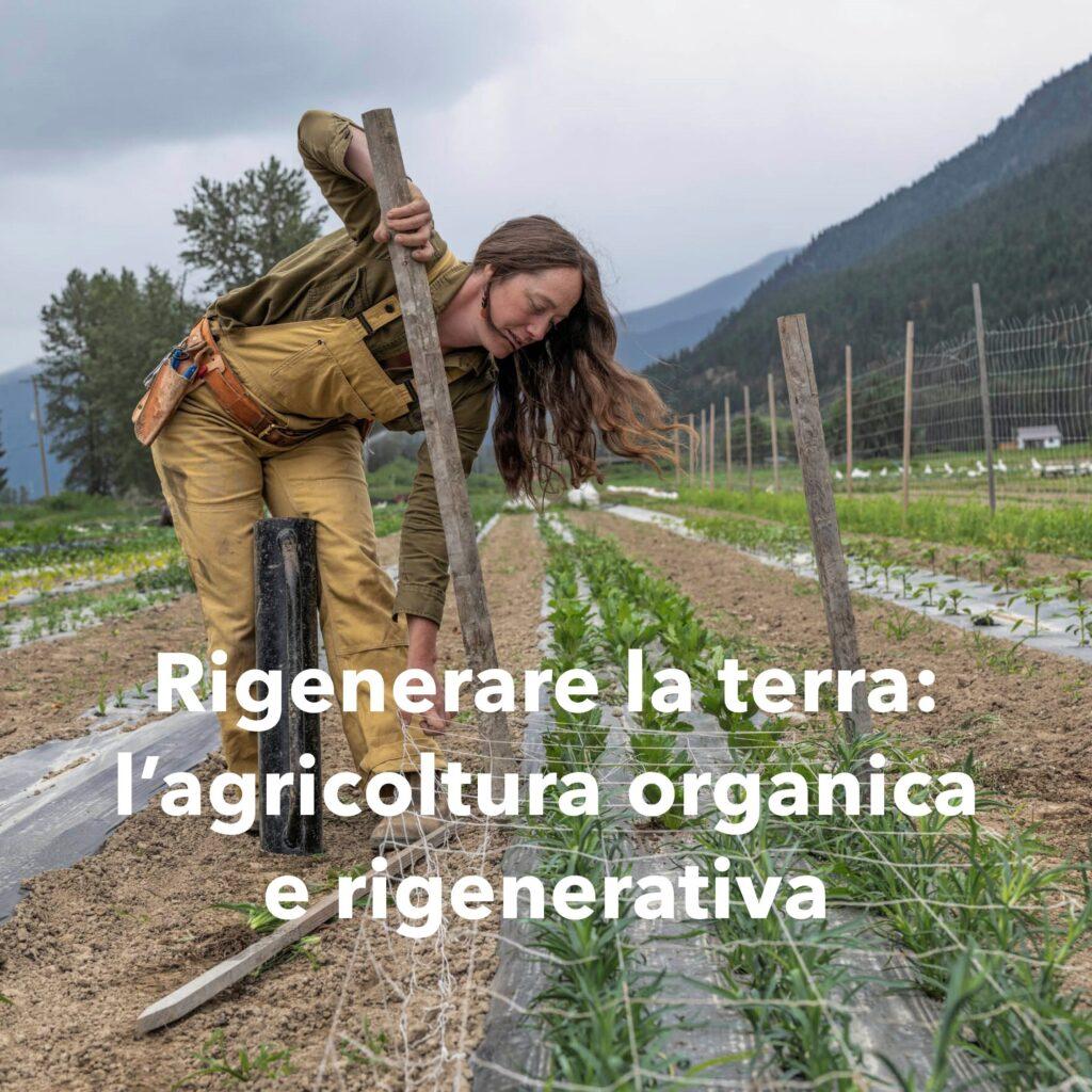 BioEcoGeo_patagonia