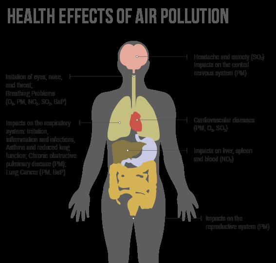 BioEcoGeo_Health_effects_air_pollution