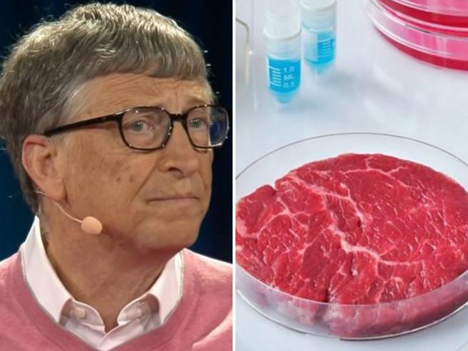 BioEcoGeo_Carne Sintetica